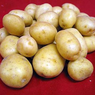 Vegetable_potatoes-5653